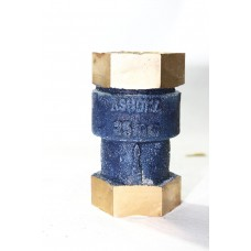 Gm Check Valve Vertical Lift Screwed (Is-778)  (Sant)